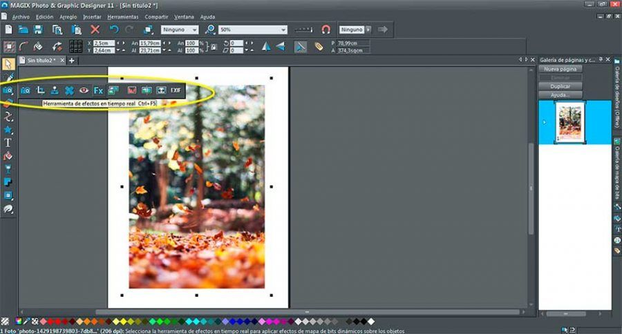 MAGIX-Photo-&-Graphic-Designer-11-03