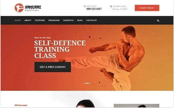tema wordpress club judo